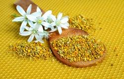 Blütenstaub in einem hölzernen Löffel Lizenzfreie Stockfotografie