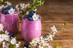 Bl?b?ryoghurten eller yoghurt i exponeringsglas tj?nade som med nya bl?b?r och k?rsb?rsr?da blommor f?r v?rblomning royaltyfri bild