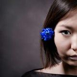 blå blomma Royaltyfri Foto