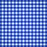 blå gingham Arkivbilder