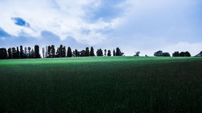 Blå himmel för grönt grönt fält med moln Arkivfoton