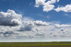 Bl? himmel och f?lt, himmelbakgrund med mycket sm? moln arkivbild