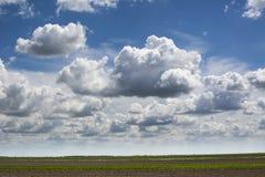 Bl? himmel och f?lt, himmelbakgrund med mycket sm? moln royaltyfria foton