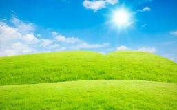 Blå himmel och vitmoln och gräs Arkivbild