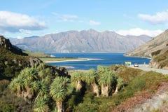 bl? lake New Zealand royaltyfria foton
