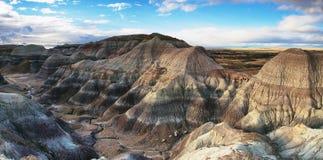 Blå Mesa, förstenade Forest National Park Royaltyfria Foton