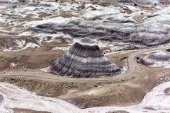 Blå Mesa - förstenade Forest National Park Royaltyfri Foto