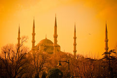 Blå moské på solnedgången, Istambul Royaltyfria Bilder