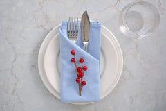 Blå och vit ställeinställning med röda bär Arkivbild