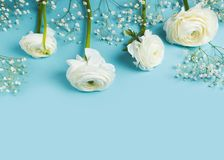 Bl?tt mode, blommor l?gger framl?nges bakgrund arkivbilder