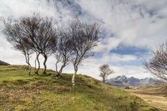 Bla Beinn widok od Cill Chriosd na wyspie Skye Obraz Stock