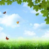 blåa skies under Royaltyfri Fotografi