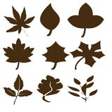 Black abstract leaf shapes Royalty Free Stock Photos