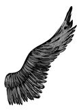 Black abstract wing Royalty Free Stock Images