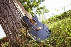 Black Acoustic Cutaway Guitar on Tree Royalty Free Stock Photos