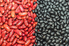 Black adzuki bean, red bean Stock Photos