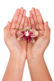 Black African American woman hand holding an orchid flower Stock Photo