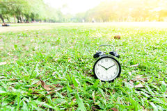 Black alarm clock on the lawn. Classical black alarm clock on green lawn in the park in day time Royalty Free Stock Images