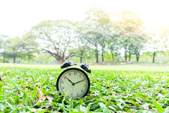 Black alarm clock in the park Stock Images