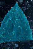 Black alga leaf micro Royalty Free Stock Images