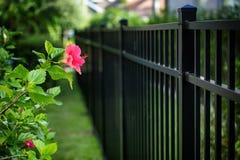 Black Aluminum Fence. 4 feet Black Aluminum Fence 3 rails around your house royalty free stock photography