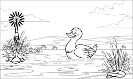Free Black And White Coloring Page Duck In Pond Stock Image - 143573041
