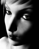 Black And White Digital Female Portrait Royalty Free Stock Photography