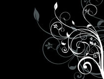 Free Black And White Floral Background Royalty Free Stock Images - 12865319