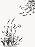 Black And White Floral Designs Stock Image