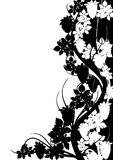 Black And White Grape Pattern Stock Image