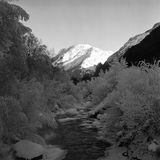 Black And White River Flow Royalty Free Stock Photos