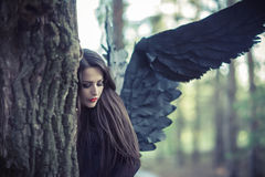 Black angel in the forest Stock Images