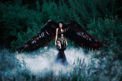 Black Angel. Pretty girl-demon. With black wings. An image for Halloween. Image of an old book of fairy tales. Fashionable toning with noise Stock Images