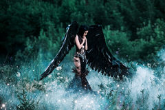 Black Angel. Pretty girl-demon with black wings. An image for Halloween. Image of an old book of fairy tales. Fashionable toning with noise Royalty Free Stock Photos