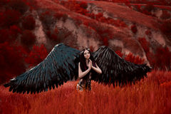 Black Angel. Pretty girl-demon Royalty Free Stock Photos