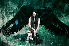 Black Angel. Pretty girl-demon. With black wings. An image for Halloween. Image of an old book of fairy tales. Fashionable toning Stock Photography