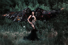 Black Angel. Pretty girl-demon. With black wings. An image for Halloween. Image of an old book of fairy tales. Fashionable toning Royalty Free Stock Photos