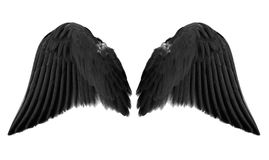 Black angel wings. Isolated on white background stock images