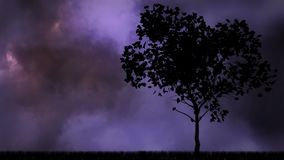 Thunder and tree Video. Black animated Tree against animated thunder storm and dark clouds background stock video footage
