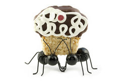 Black Ants Carrying Cupcake Stock Images