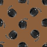 Black apple hand drawn pattern on brown background. Black apple hand drawn seamless pattern on brown background Stock Photo