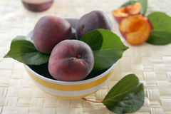 Black apricots Stock Image