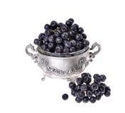 Black aronia  chokeberry  isolated Stock Photography