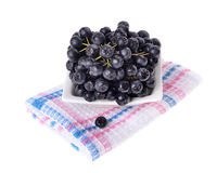 Black aronia  chokeberry  isolated Royalty Free Stock Photo