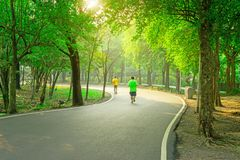 A black asfalt concrete jogging track in a public park, two people wearing yellow and green T shirt running on curve shape way stock photo