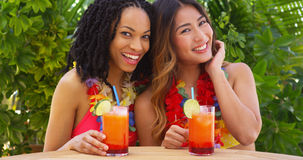 Black and Asian best friends enjoying tropical vacation together Stock Photography
