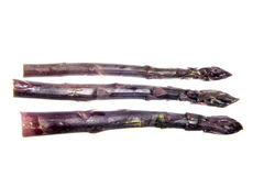 Black asparagus isolated Stock Photos