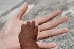 Black baby's hand on adult's palm. Black baby's hand on caucasian adult's palm Stock Photography