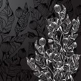 Black background with decorative flowers stock illustration