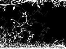 Black background with floral frame Stock Photos